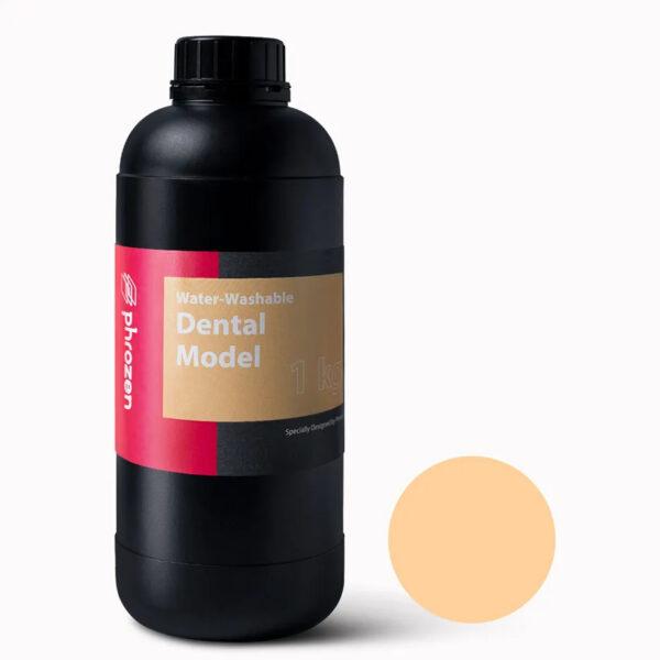Phrozen Water Washable Dental Model